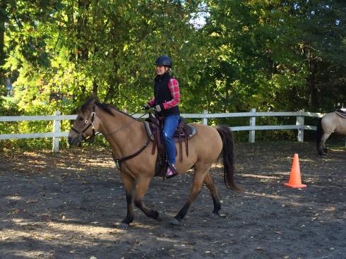 Horseback riding on site